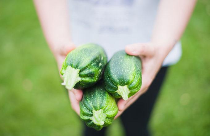 holding zucchini