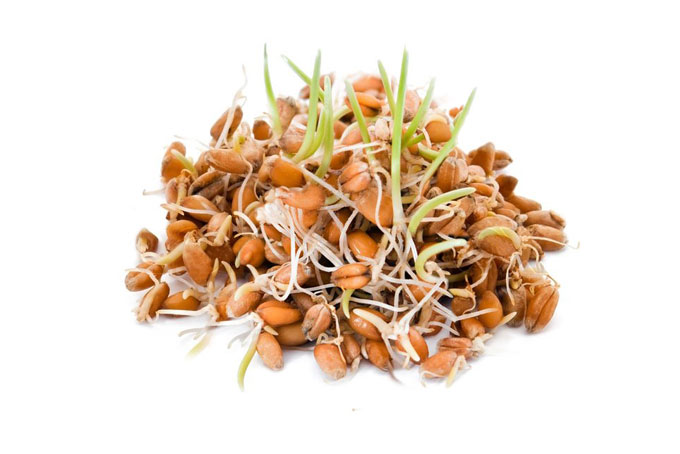 sprouting - sprouted grains